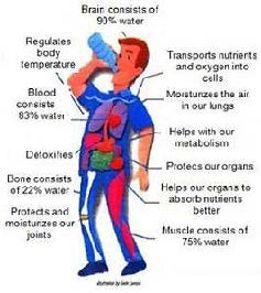 11 Benefits of Drinking Water